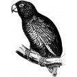 Animal Stamp Template 008