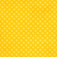 At the Zoo - Yellow Dots Paper
