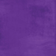 At the Zoo - Dark Purple Solid Paper