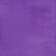 At the Zoo - Purple Solid Paper