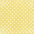 Apple Crisp - Yellow Gingham Paper