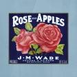 Apple Crisp - Apple Label Paper