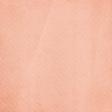 Apple Crisp - Light Pink Stripe Paper