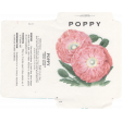 Fresh - Poppy Seed Packet