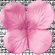 Good Life April 2018 - Pink Flower