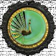 All the Princesses - Peacock Brad