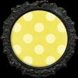 All the Princesses - Yellow Dot Brad