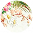 All the Princesses - Ephemera Brad Disk 61
