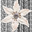 All the Princesses - White Flower 03