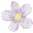 All the Princesses - Painted Purple Flower 01