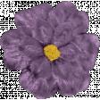 Chills & Thrills Purple Flower 02
