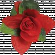 Chills & Thrills Red Flower 01