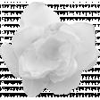 Sheer Flower Template 002