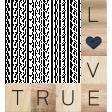 Rustic Charm - True Love Word Art