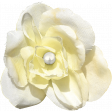 Reflections of Strength - White Flower