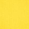 Summer Splash - Yellow Solid Paper
