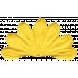 Summer Splash - Yellow Flower