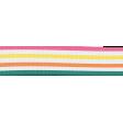 Summer Splash - Striped Ribbon