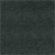 A Bug's World - Black Chalkboard Paper