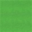A Bug's World - Green Chalkboard Paper