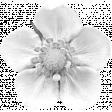 Flower Template 005