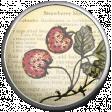 Strawberry Fields - Strawberry Brad