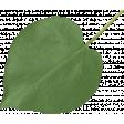 Strawberry Fields - Green Leaf