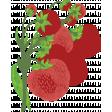 Strawberry Fields - Chalk Strawberry Stamp 07