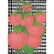 Strawberry Fields - Chalk Strawberry Stamp 08