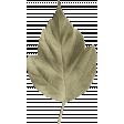 Autumn Day - Leaf