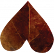 Falling For You - Brown Leaf Heart 1
