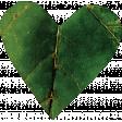 Falling For You - Green Leaf Heart 4