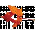 Falling For You - Orange Leaf 1