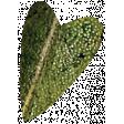 Falling For You - Green Leaf Heart 3