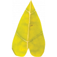 Falling For You - Yellow Leaf Heart 4