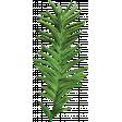 Let's Get Festive - Green Sprig