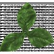Let's Get Festive - Green Leaf Cluster