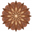 Woodflower-6