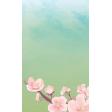 Blossom Card 2