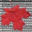 Fall Leaf 09-Bear Wallow AZ