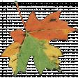 leaf oct 2021 blog train