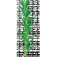 ABM-YayPizzaNight-Greenery-Rosemary-01