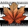 Pumpkin Spice Leaf #2