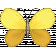 Enjoy Each Moment Butterfly 2