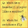 A Bug's World - pocket card #1