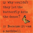 A Bug's World - pocket card #2