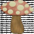 A Bug's World - mushroom