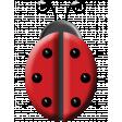A Bug's World- ladybug #1