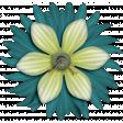 Hit the Road - flower 5