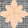 Butterfly Spring - flower 5